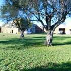 En venta casa rustica con gran terreno situada cerca de Figueres, Costa Brava